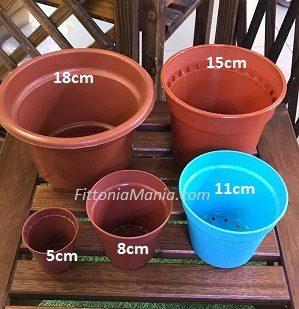 Plastic Pot & Saucer